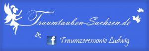 banner-webseite